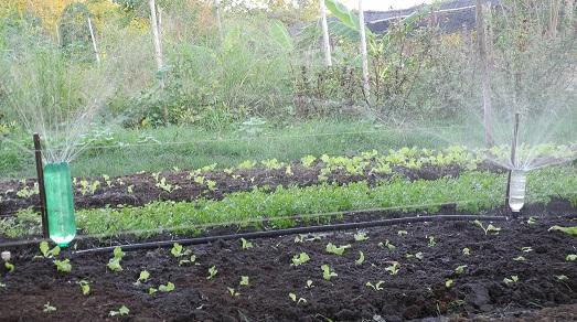 irrigadores-de-jardim
